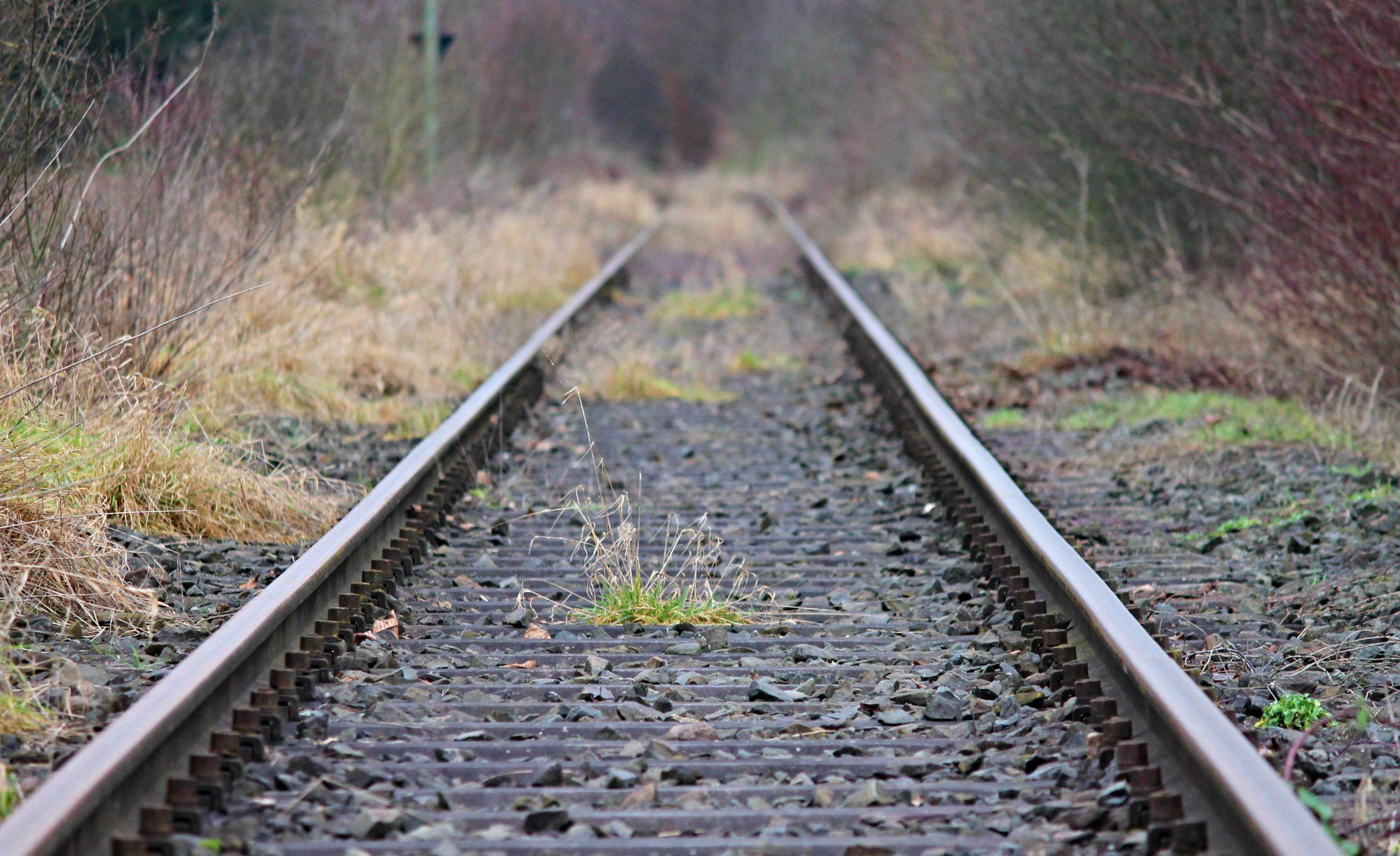 "Bürgerinitiative ""Dialog Heidekrautbahn"""